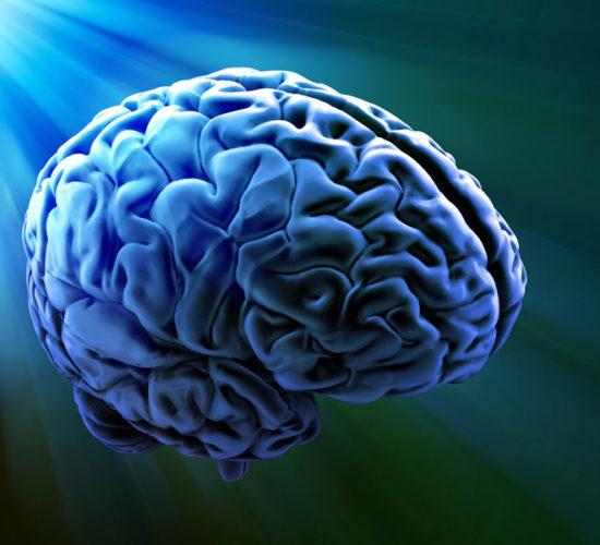 Нейрофизиологические основы состояний сознания